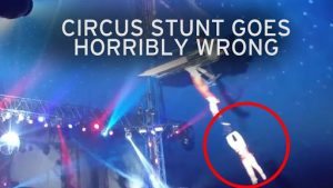 Circus Acts Gone Wrong
