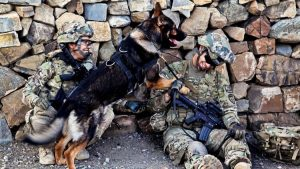 Soldiers and Military Dog